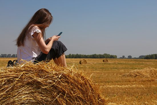 Young woman sitting on straw bale looking at smartphone