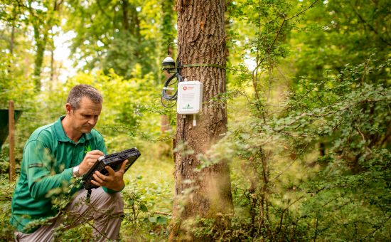 photo of Matthew Wilkinson kneeling in the Alice Holt Forest next to a Vodafone IoT sensor