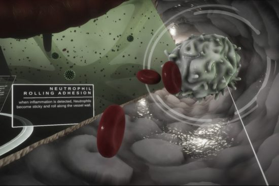 Still from virtual reality graphic showing a human vein
