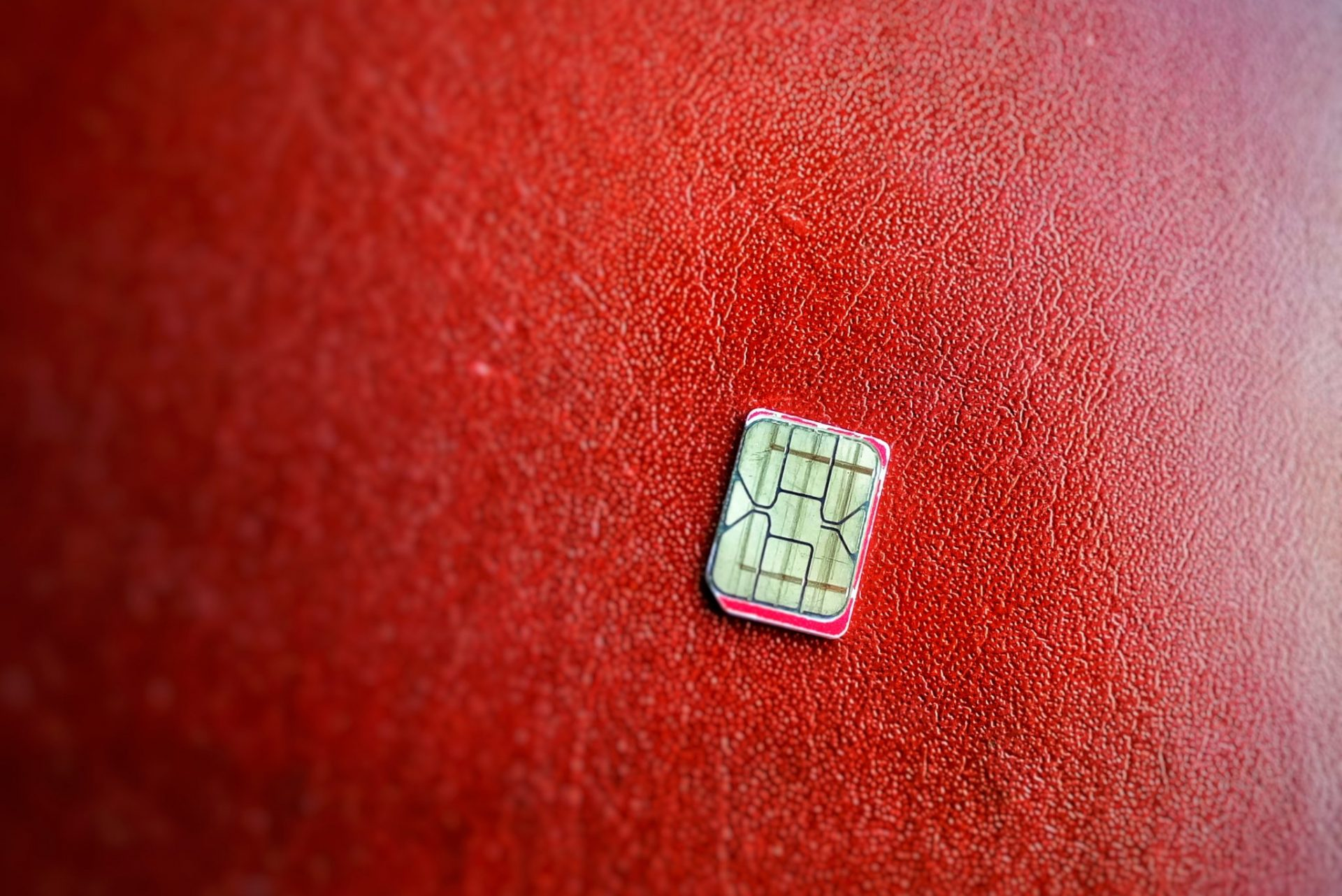 SIM card on red surface