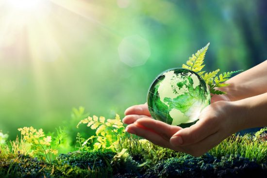 Holding glass earth in woodland surroundings
