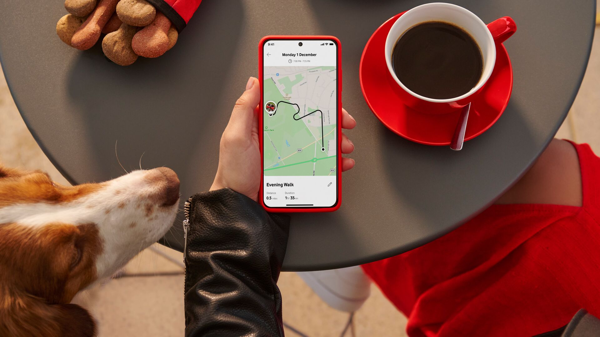 Image of someone using the Vodafone Smart App with V-Pet.