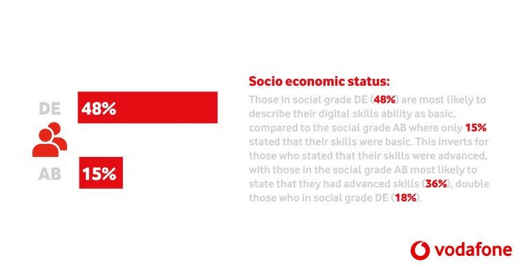 Vodafone Digital Divide Report Infographic_2_LinkedIn