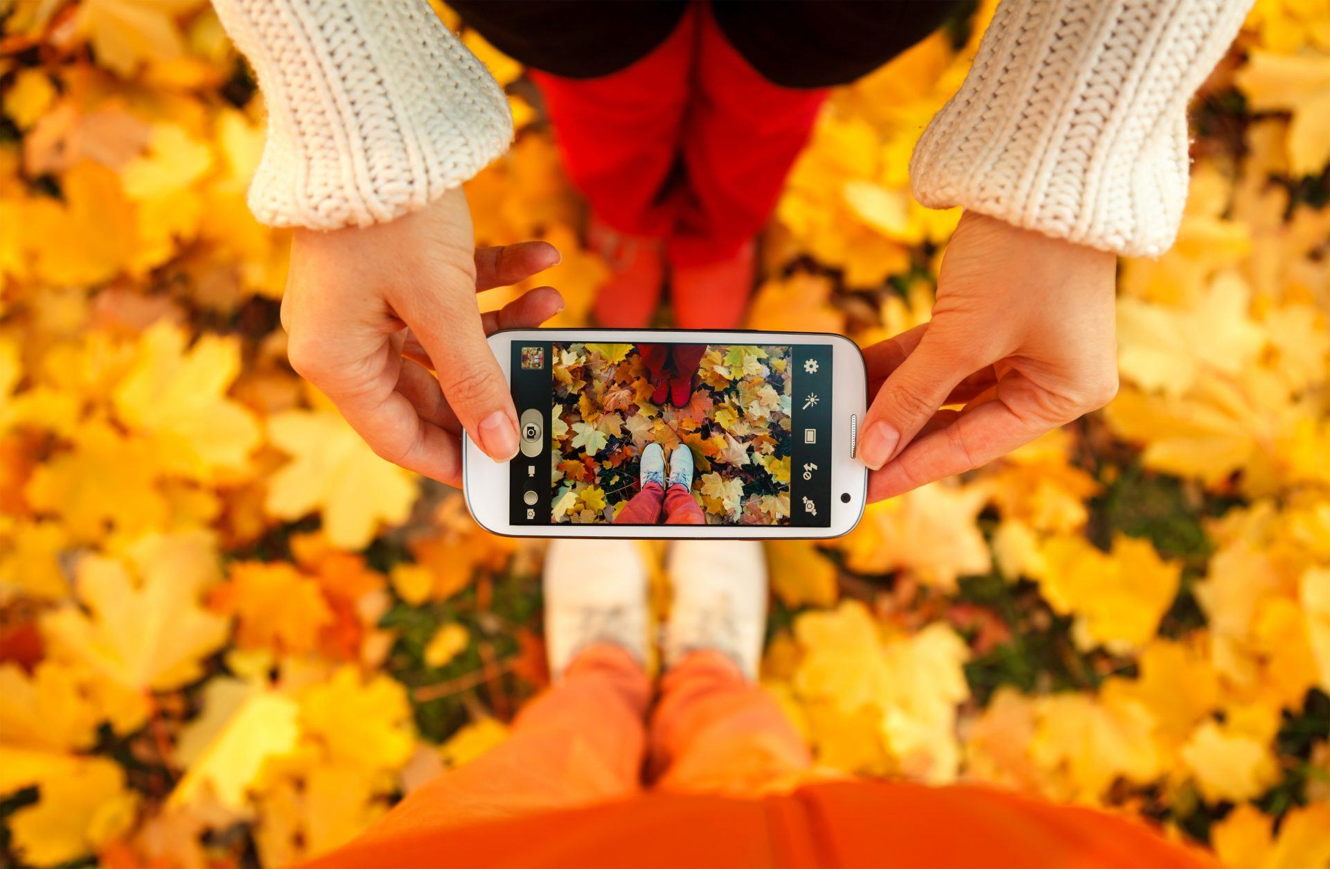 Autumn leaves as seen through smartphone camera