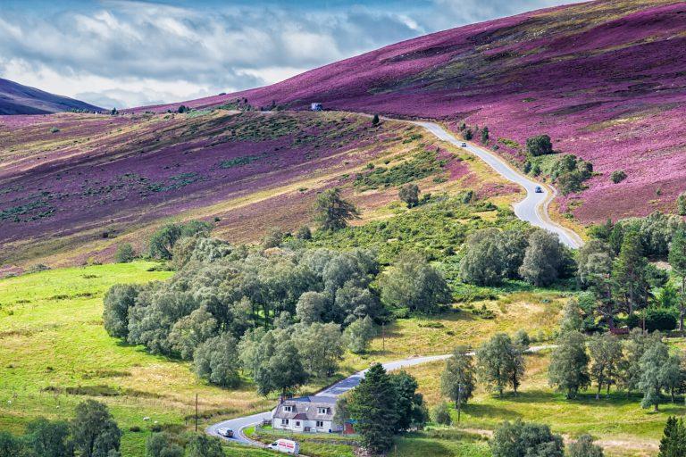 Scottish road through beautiful countryside